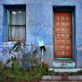 Nikolyn McDonald - Door and Window #1 - Barrio Historico - Tucson