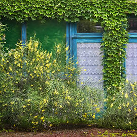 Nikolyn McDonald - Doors - Windows - Brittany - France