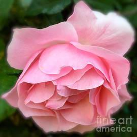 Wonju Hulse - Down look pink
