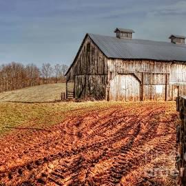 Brenda Bostic - Down On The Farm