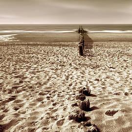 Wim Lanclus - Down The Shore