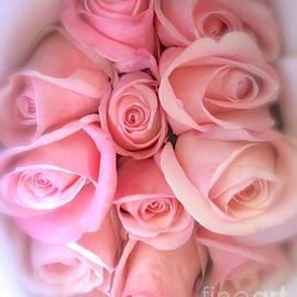 Wonju Hulse - Dozen of pink rose