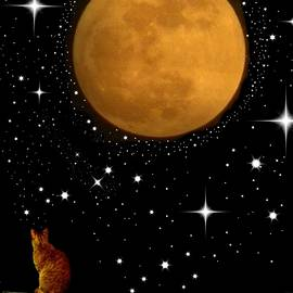 Kathy Barney - Dream Big- Cat Moon Stars
