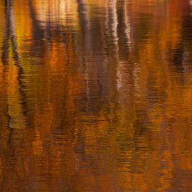 Karol Livote - Dreamy Autumn