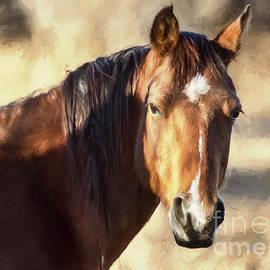 Janice Rae Pariza - Dreamy Colorado Mustang