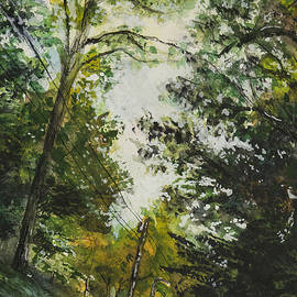 Laura Ross - Drew Valley