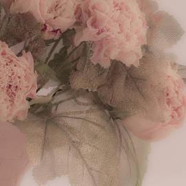 Sandra Foster - Dried Pink Peonies