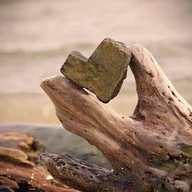 Sarah Labadie - Drift Wood Heart Stone