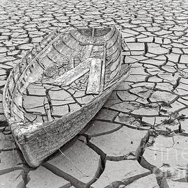 Drought - Edward Fielding