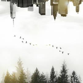 Nicklas Gustafsson - Duality