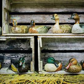 Brian Wallace - Duck Decoy Display