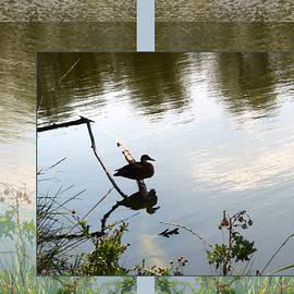 Gretchen Wrede - Duck Pond Perch on Summer Day