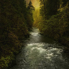 Marci Potts - Duckabush River in the Olympic Mountains of Washington State