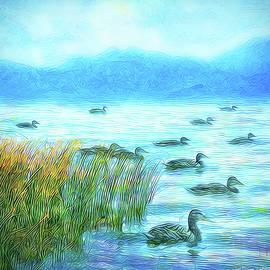 Joel Bruce Wallach - Ducks On Misty Morn - Lake In Boulder County Colorado
