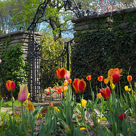 Matailong Du - Dumbarton Oaks