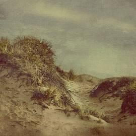 Hugo Bussen - Dunes