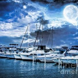 Elizabeth Duggan - Dunkirk Boat Harbor By Moonlight