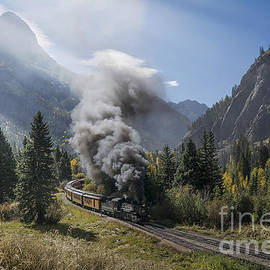 Priscilla Burgers - Durango and Silverton Train at Elk Park Wye