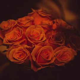 Jenny Rainbow - Dutch Yellow Roses
