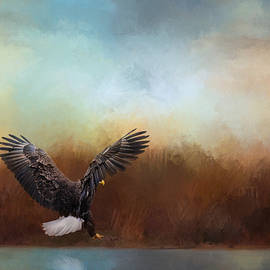 Jai Johnson - Eagle Hunting In The Marsh