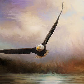 Jai Johnson - Eagle In The Marsh