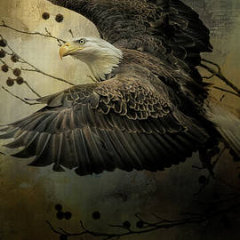 Jai Johnson - Eagle Rising Wildlife Art
