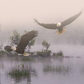 IM Spadecaller - Eagles at Dawn