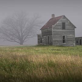 Randall Nyhof - Early Morning Fog with Abandoned Farm House