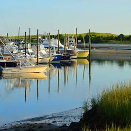 Dianne Cowen - Early Morning Harbor Side