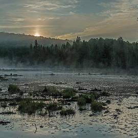 Steve Dunsford - Early Morning Mist
