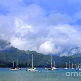 Mary Deal - Early Morning on Hanalei Bay