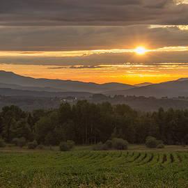 Tim Kirchoff - Early Summer Evening