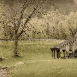 Toni Abdnour - East Tennessee Countryside