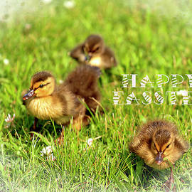 Geraldine Scull - Easter greeting ducklings