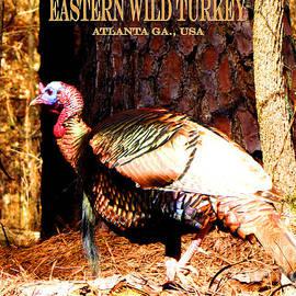 Gardening Perfection - Eastern Wild Turkey