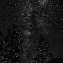 PhotoWorks By Don Hoekwater - Ebbetts Pass Night in Black and White