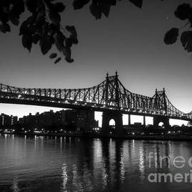 James Aiken - Ed Koch Queensboro Bridge Horizontal - BW