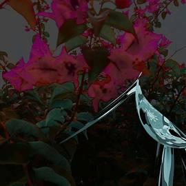 Iris Gelbart - Eden