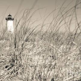 David Rucker - Edgartown Harbor Light