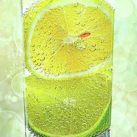 Kaye Menner - Effervescent Freshness by Kaye Menner