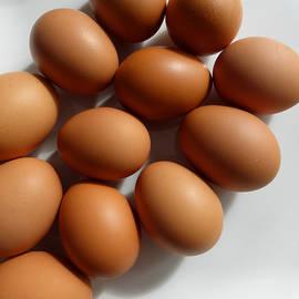 Tina M Wenger - Eggs For Baking
