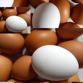 Tina M Wenger - Eggs For Breakfast