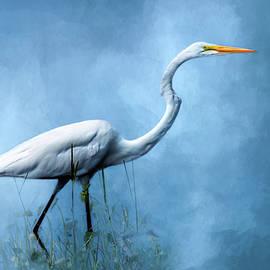 Cyndy Doty - Egret