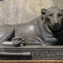 Jean Hall - Egyptian Lion