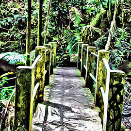 El Yunque bridge - Carey Chen