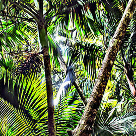 El yunque canopy - Carey Chen