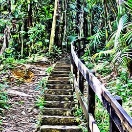 El Yunque stairway - Carey Chen