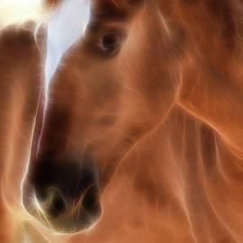 Athena Mckinzie - Electric Equine