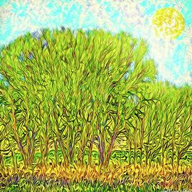 Joel Bruce Wallach - Electric Green Trees - Boulder County Colorado