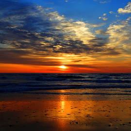 Dianne Cowen - Electric Golden Ocean Sunrise